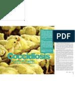 Coccidiosis en pollos de engorde. Reporte de caso, Tunja, Boyacá