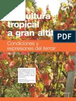 Viticultura tropical a gran altitud. Condiciones y expresiones del terroir