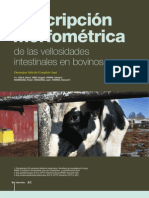 Descripción Morfométrica de las vellosidades Intestinales en bovinos