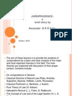 101308309 Jurisprudence