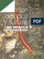 Evolución biológica y cultural
