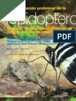 Caracterización preliminar de la lepidopterofauna (insecta