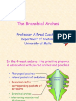 Br Arches