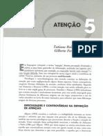 Neuropsicologia hoje - capítulo 05 parte 1 ATENÇÃO