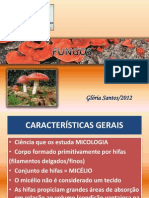 204648-Fungos 2 Ano PDF