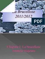 La Brucellose