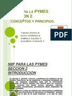 NIIF PYMES SECCION2