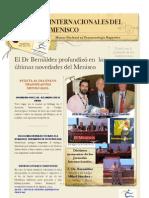 Tratamiento Lesiones Meniscales Dr Bernaldez