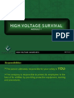 High Voltage Survival