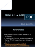 Etapas Auditoria TI
