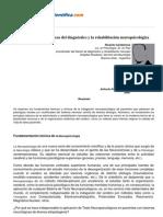 Bases Teoricas y Clinicas Del Diagnostico y La Rehabilitacion Neuropsicologica