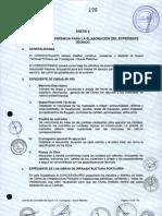 Anexo 6 - TDR para la elaboración del Expediente Técnico