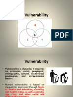 4 Vulnerability