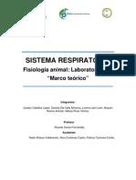 Sistema respiratorio (Marco teórico)