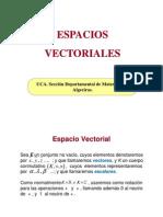 espaciosvectoriales-101018133828-phpapp02