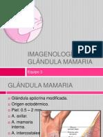 IMAGENOLOGÍA DE LA GLÁNDULA MAMARIA