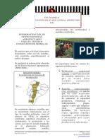 Uso de semillas a través de los datos del III Censo Nacional Agropecuario - Rubro Papa (Ecuador)