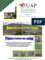 CANSAS ICA PERÚ