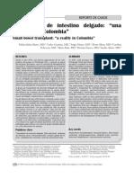 Transplante de Intestino Delgado en Colombia. 2008