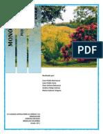 Puerto Berrio Monografia