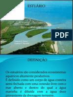 apresentacao_estuarios[1]