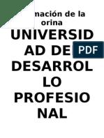 Xpo Renal Formacion de La Orina