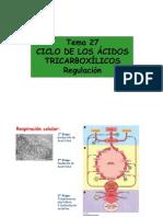 Ciclo Acidos Tricarboxilicos Cv t27