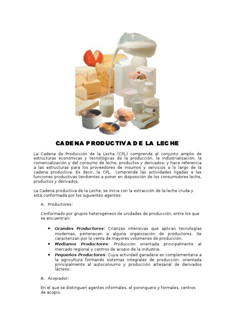 Circuito De La Leche : Proceso de la leche youtube
