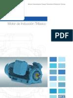 WEG Hgf Motor Trifasico de Induccion 50029375 Catalogo Espanol