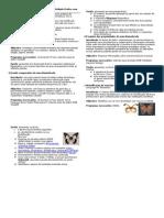 Sistematica ActivPrat01