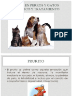 Alergias en Perros y Gatos - Copia