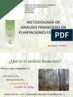 Analisis Financiero Forestal