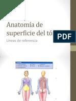 Anatomía Completa
