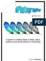 Photoshop Guide to Monochrome and Splittone Effects