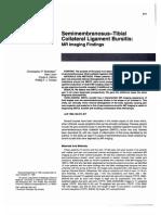 Semimembranosus-Tibial Collateral Ligament Bursitis