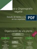 Histologia y Organografia Vegetal 1-1a