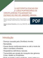 ALTERAÇÕES HISTOPATOLÓGICAS EM PULMÕES DE CÃES PORTADORES DE
