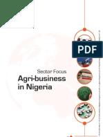Pi Article - Nigeria - Agri- Business.pdf