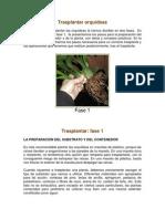 Cuidado -Transplate- y Cultivo de Las Orquideas