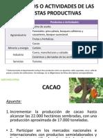 PRODUCTOS_APUESTAS_PRODUCTIVAS