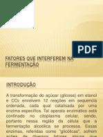 Fatores que interferem na fermentação