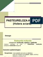 PASTEURELOZA_AVIARA