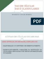 AULA+X+ATIPIAS+EM+CÉLULAS+ESCAMOSAS+E+GLANDULARES