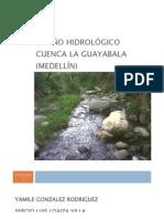 Diseño Hidrologico Cuenca la Guayabala