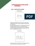 EJERCICIOS PRÁCTICOS DE LA FASE I-II-II DE ENSEÑANZA
