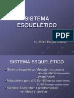 Sistema Esqueletico - embriología