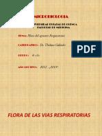 Flora Microbiana Normal Aparato Respiratorio