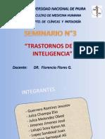 Seminario 3 - Trastornos de La Inteligencia