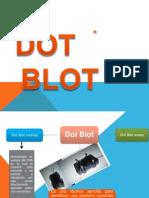 Dot Blot