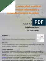 Seguridad, privacidad, medidas de prevención informática erika lorena
